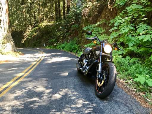 new or used harley--davidson night rod motorcycle for sale