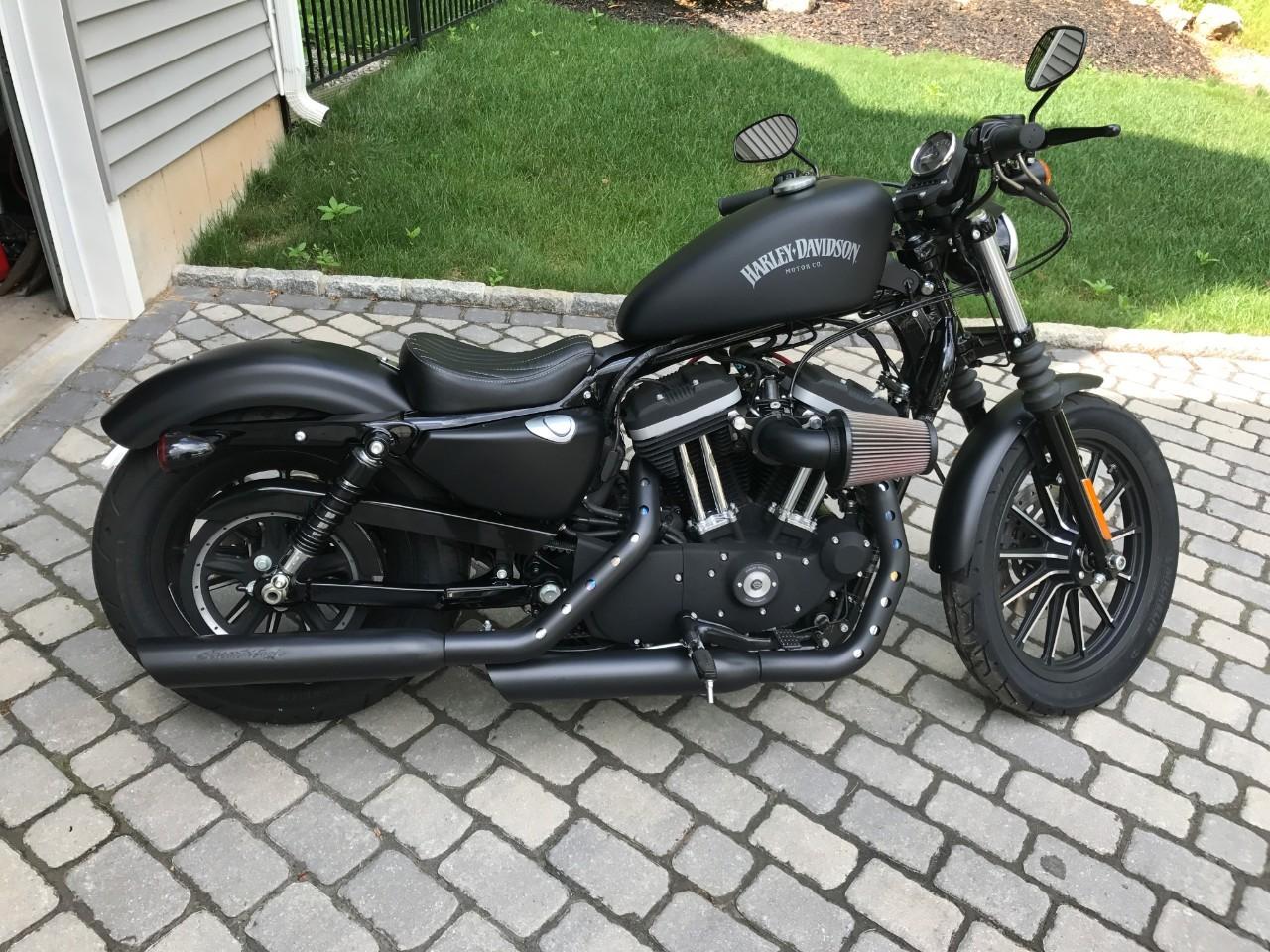 XL883 Sportster - 2 Tone Purple For Sale - Harley-Davidson
