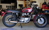 Triumph Classic Motorcycles Logo