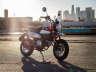 2021 Honda Monkey ABS, motorcycle listing