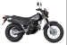 2022 Yamaha TW200