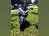 2014 Kawasaki NINJA 300 ABS SE, motorcycle listing
